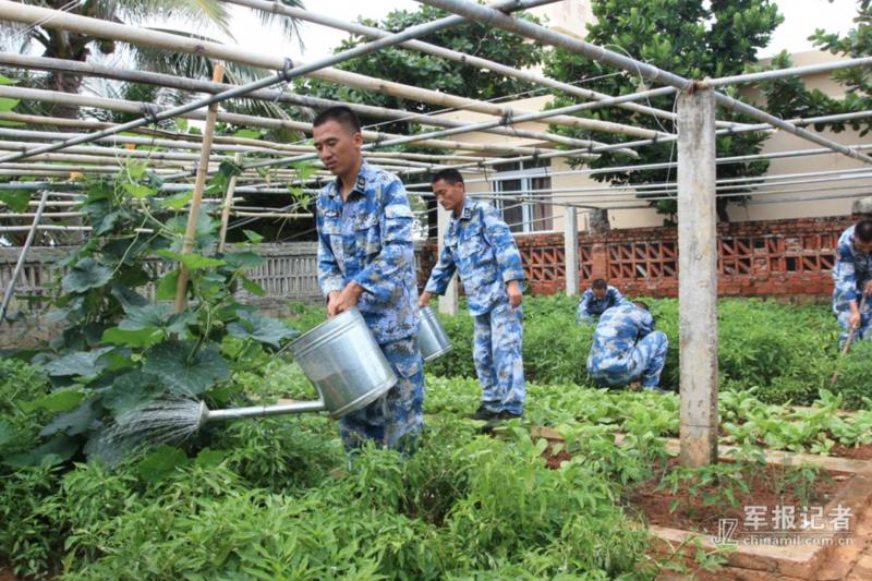 中建島上的解放軍正在整理菜園。