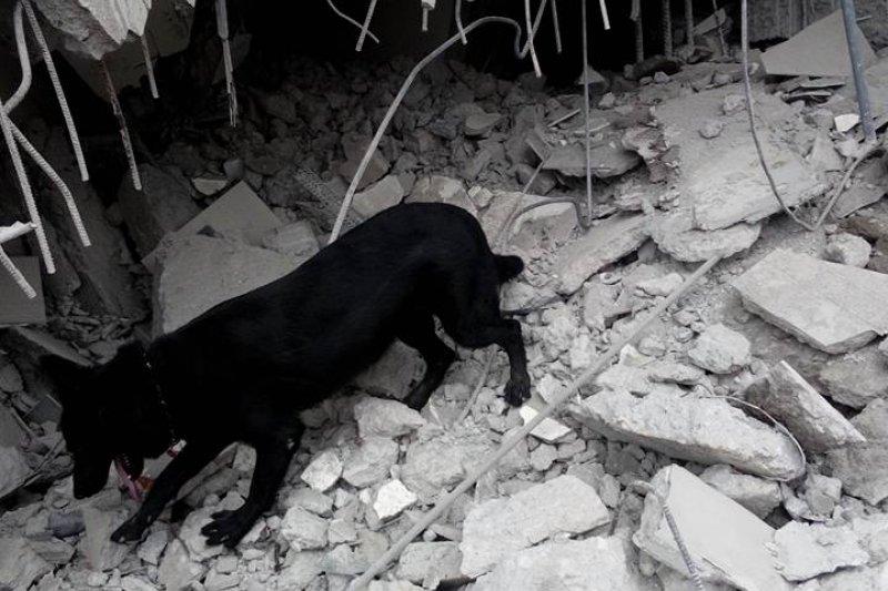 台南大地震,震出土壤液化和防災型都更等問題。(台灣精英國際搜救協會官網)