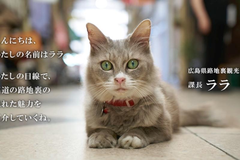 廣島縣推出的「貓咪街景」模式,圖為觀光課長拉拉(ララ)。(翻攝加油!廣島縣網站)