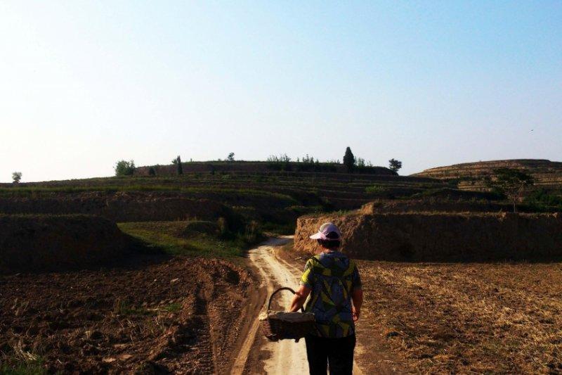 中國陝西、陝北鄉村各有各的美好風景。(圖/旅讀中國)