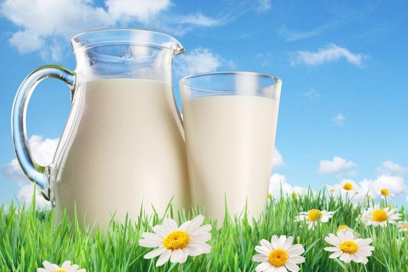 動物性白蛋白到底有沒有營養,要聽專家說。