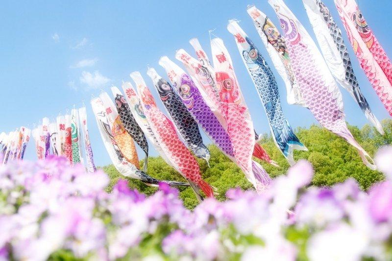 春天到日本旅遊不只賞櫻,別忘了欣賞傳統的鯉魚旗文化!(圖/Takahiro Urano@flickr)