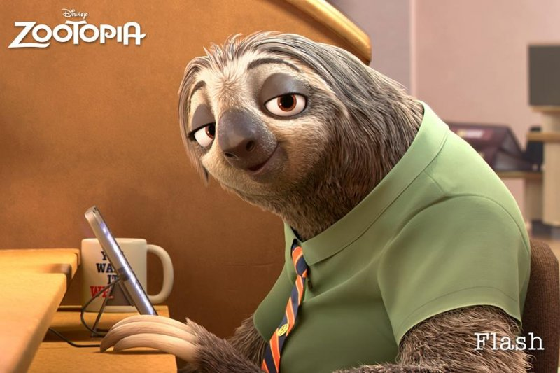 看過《動物方城市》的人一定對裡面的樹懶印象深刻。(圖/Zootopia@facebook)