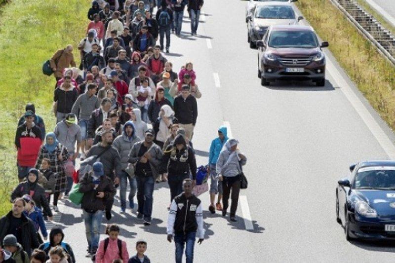 丹麥公路上敘利亞難民步行。(www.telesurtv.net)
