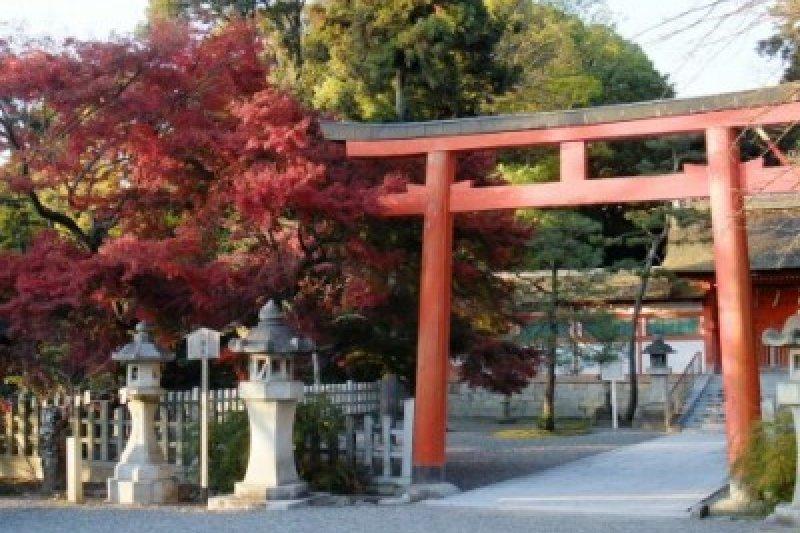 神社鳥居,表示神社境內的入口。(圖/MATCHA)