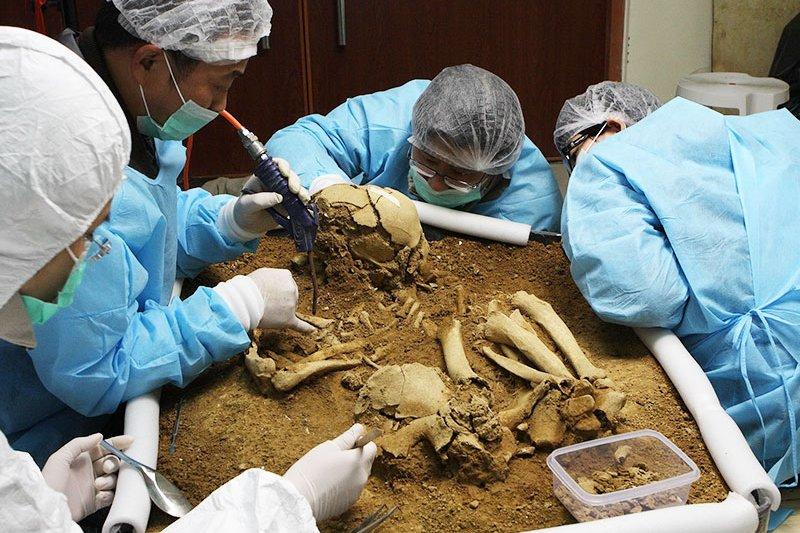 人類所邱鴻霖助理教授進行左鎮人骨研究。(取自清華大學)