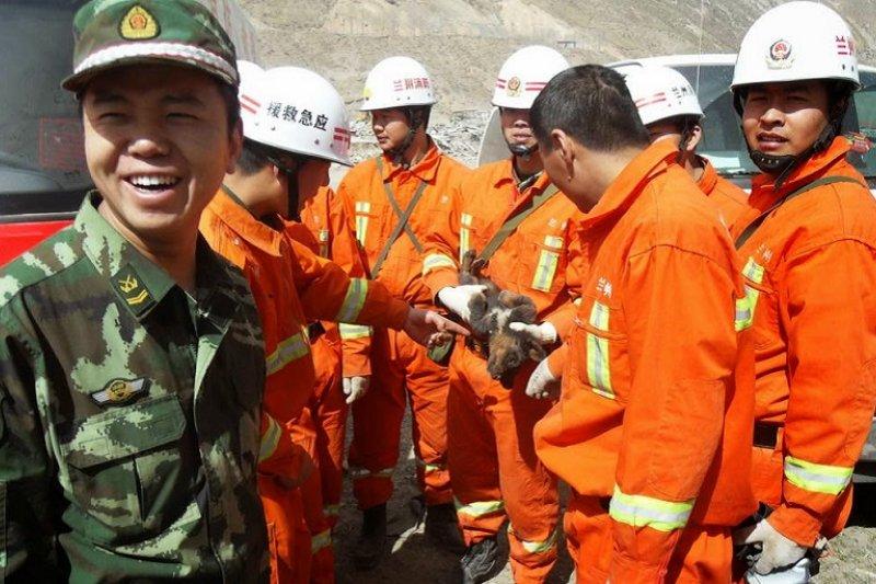 連救援隊也公然偷小藏獒。(來源:唯色「看不見的西藏」網頁)