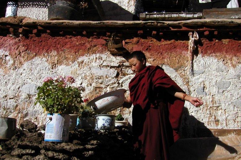 十一年前的甲瑪鄉,顏色如此鮮亮,十一年後風貌不再。(唯色攝。取自作者「看不見的西藏」網頁)