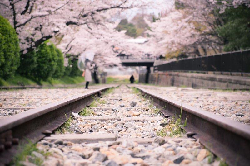 (圖/PROryuta kawakami@Flickr)