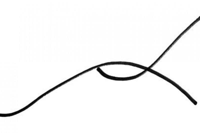 必須在第一條曲線尚未觸頂時,就展開第二曲線。唯有如此,才能掌握充足的資源(金錢、時間和精力),熬過第二曲線剛開始的滑落,也就是投入的階段。(書中附圖)