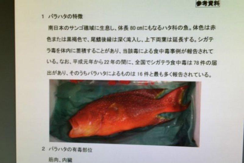 日本政府厚生省食品安全委員會官網上,圖文並茂地說明「玫瑰紅斑」的特徵和毒性是:「紅或棕色,尾鰭深彎,體內積蓄雪卡毒素(Ciguatera)。(BBC中文網)