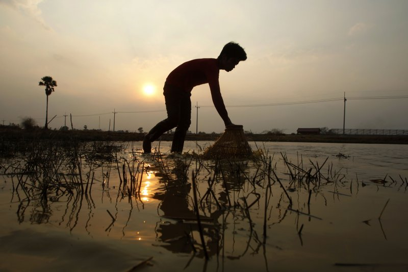 餘暉下工作的柬埔寨人。(美聯社)