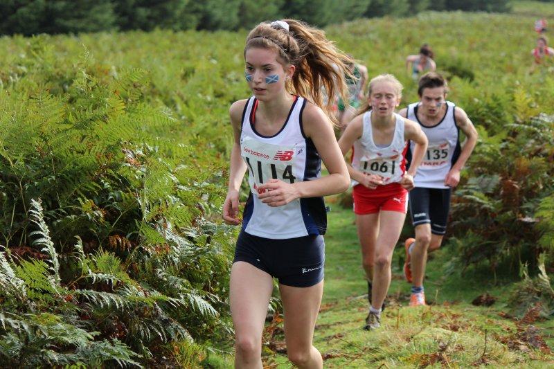 普通的路跑已經無法滿足你了嗎?那麼你就一定要嘗試「越野跑」!(圖/Gerry Brady@flickr)