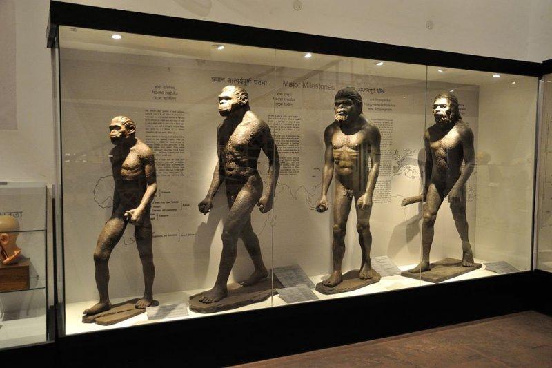 研究顯示,人類在進化途中曾處於被排擠的一群,卻也因此發展出高度的社會性。(圖/wikimedia)