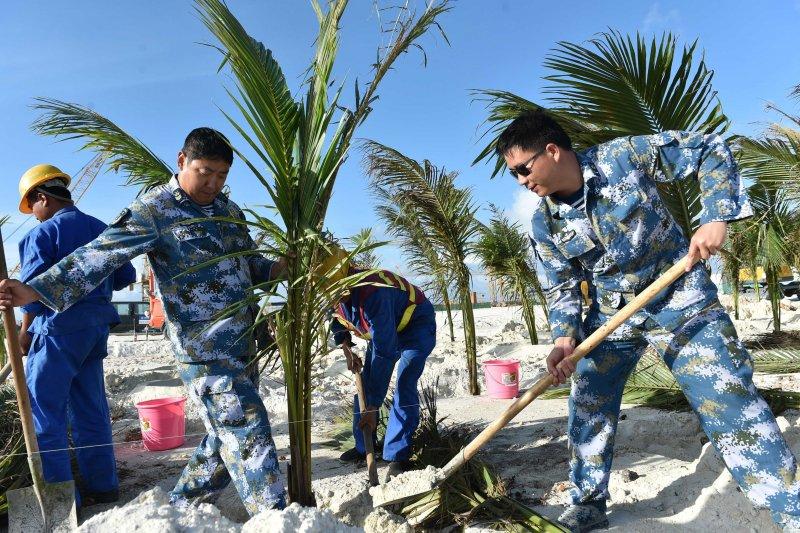 渚碧礁守礁官兵和建設者在礁上種植椰子樹。(新華社)