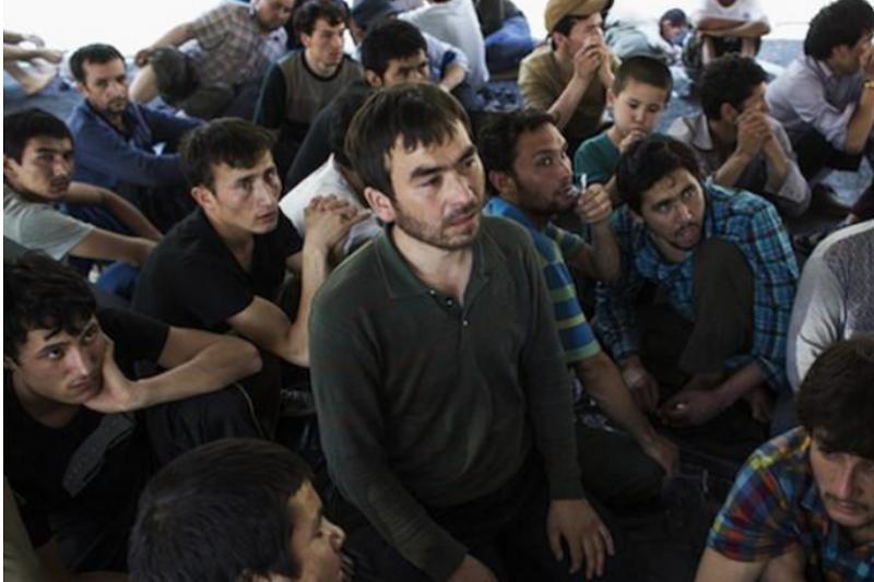 圖片來源:「世界維吾爾大會」官網最新發表《尋找一個能自由呼吸的地方:維吾爾難民及尋求庇護者當今面臨的挑戰》報告封面。