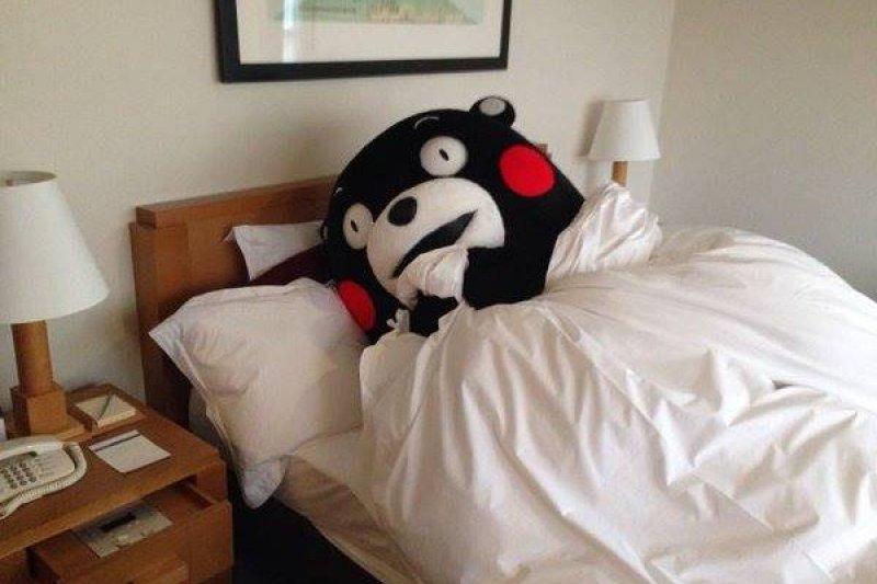 「熊本熊」為什麼是黑熊?(圖/くまモン Kumamon 熊本熊 Kawaii@facebook)