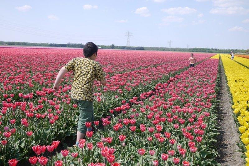 在荷蘭,孩子教養權100%在父母身上!(圖/瘋荷日曆My Dutch LifeStyle)