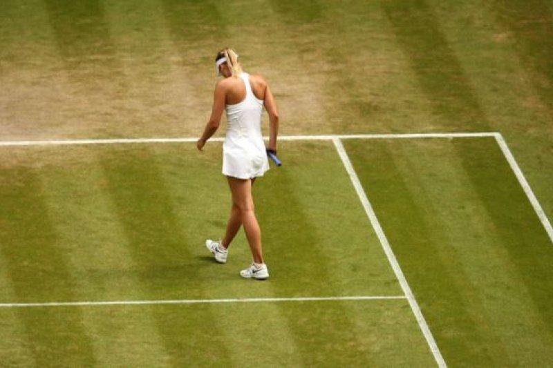莎拉波娃共贏利過五次大滿貫賽事冠軍。(BBC中文網)