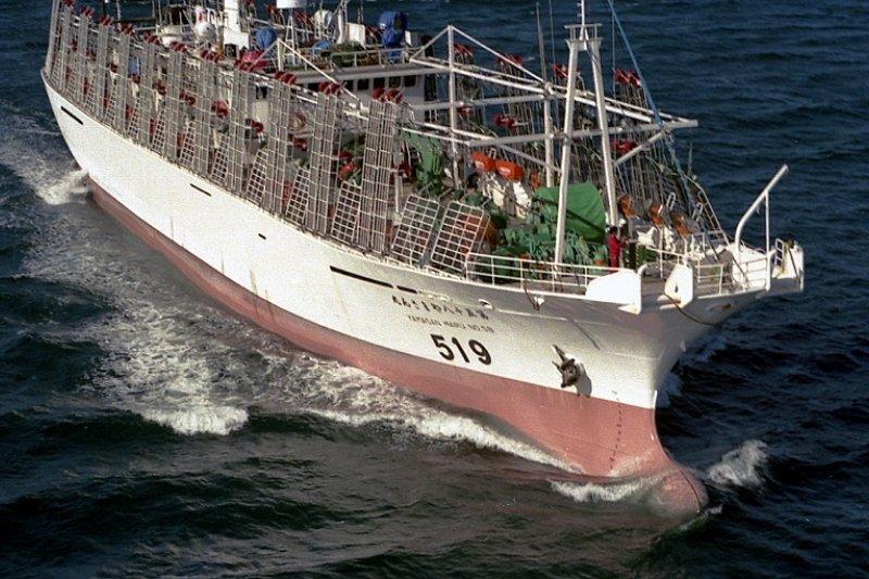 外交部今(24)日主動澄清,表示我國一向積極配合國際制裁行動,目前僱用3名北韓籍漁工的遠洋漁船正於太平洋海域作業,預計7月底靠港後即不再聘用。圖中為示意圖,非當事圖片。(取自Wellington, New Zealand的Phillip Capper@Flickr)
