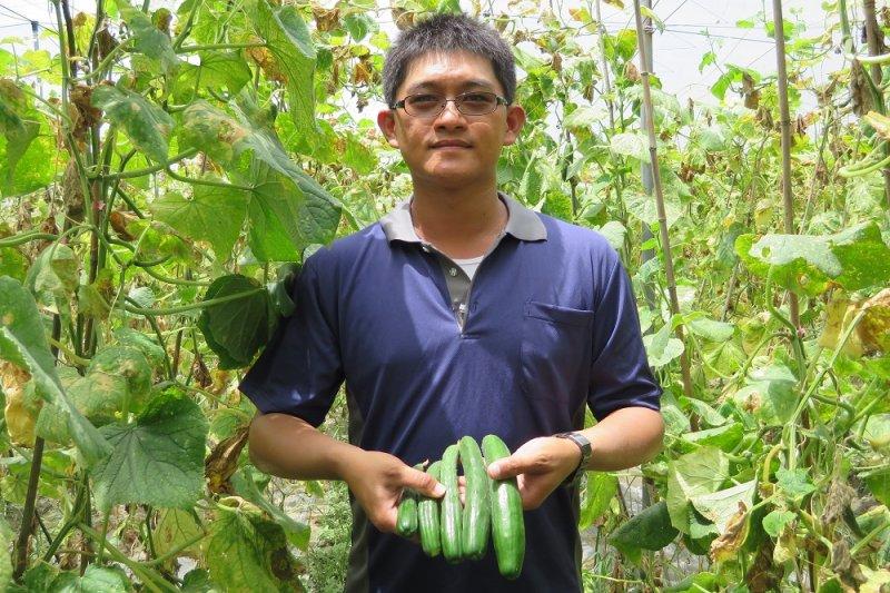 他生產有產銷履歷的小黃瓜供應超商涼麵,平均月入超過10萬元!(圖/取自屏東縣政府官方網站)