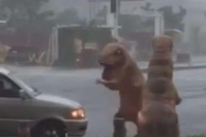 網友在爆料公社貼出有兩位穿著恐龍裝的「恐龍哥」在街頭嬉鬧的影片,留言一片罵聲。(取自爆料公社)