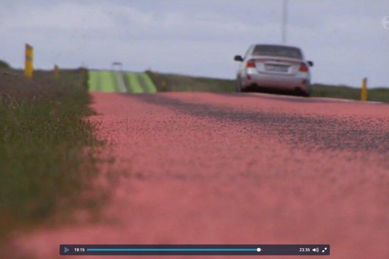 冰島生物學家將馬路塗成五顏六色,讓北極燕鷗不再「壓馬路」。(取自網路)