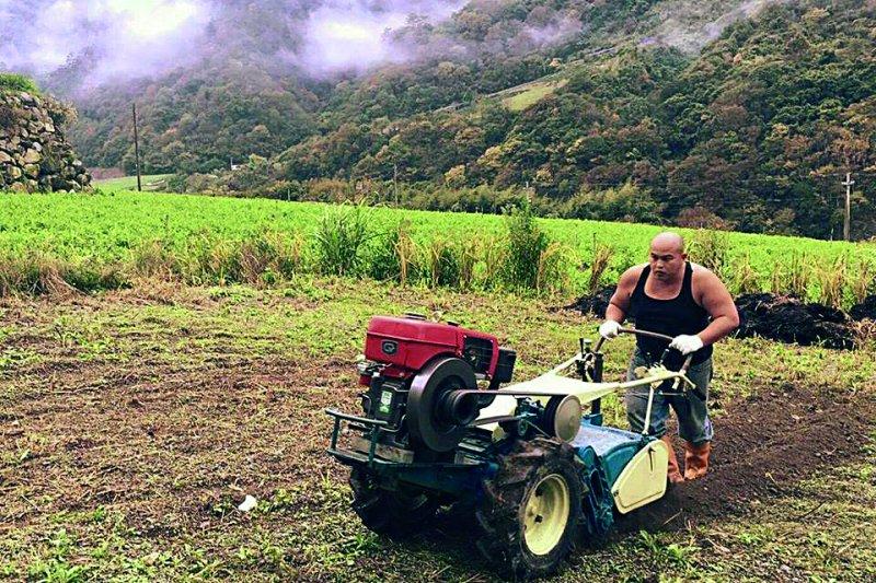 為了復育香米新勤的耕種著。(圖/旅讀中國)
