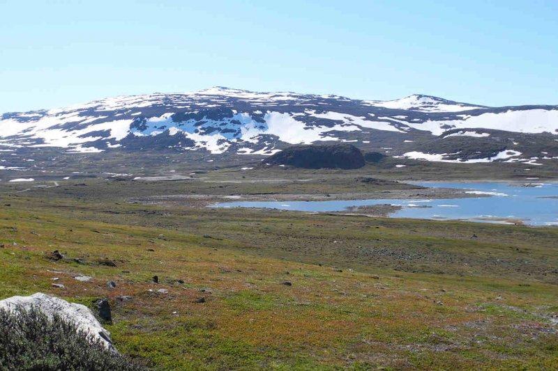 橫亙於挪威與芬蘭的哈爾蒂高原荒地(Halti fell)(取自網路)
