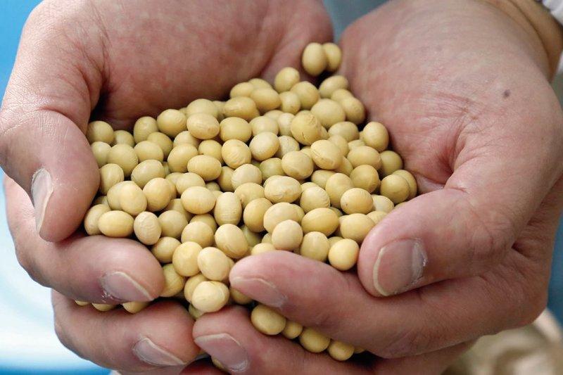 納豆是大豆製成的一道高級的料理。