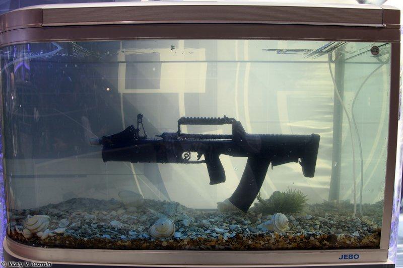ADS兩棲突擊步槍。(Vitaly V. Kuzmin@wikipedia/CC BY-SA 4.0)