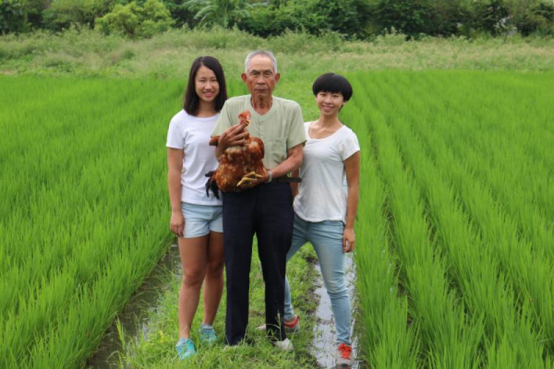 花蓮的徐家三姊妹傳承85歲爺爺技藝,希望考取證書,成為台灣第一位女性閹雞師。(圖/取自教育部青年發展署網站)