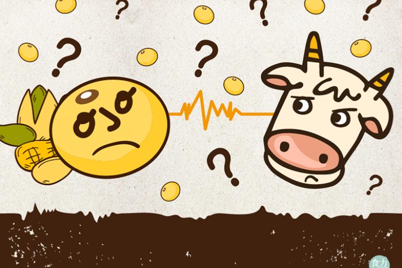 亞洲人不適合喝牛奶?營養成分不同怎麼取代?!(圖/食力提供)