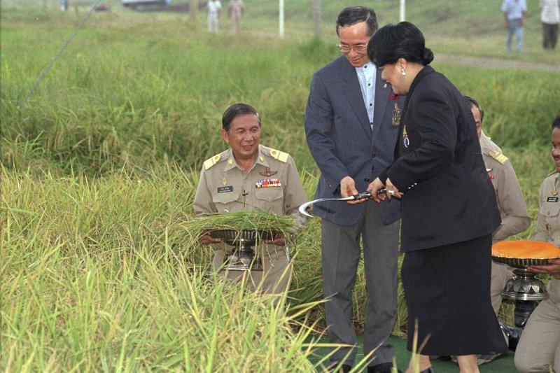 泰王蒲美蓬與王后詩麗吉巡視農村,攝於1996年(AP)