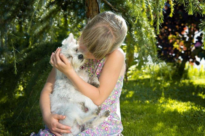 親狗狗雖然是一種關愛的表現,但卻有可能對人類身體帶來威脅。(圖/Pixabay)