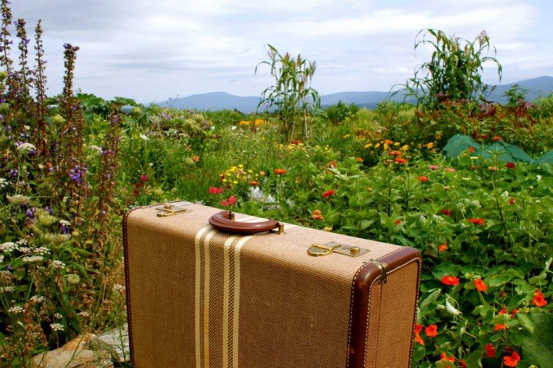 行李箱是旅遊必備行頭!(圖/Karen Cox@flickr)