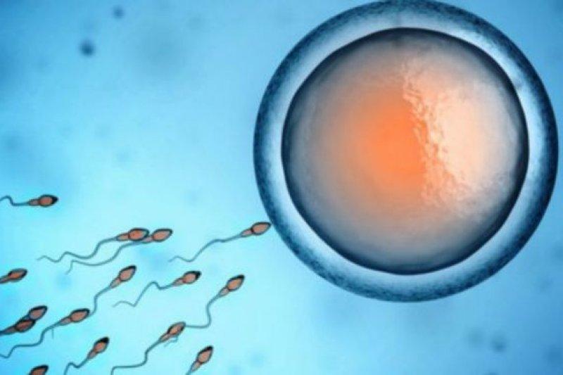 美國科學家研發出來的男性避孕針成功率達96%,但副作用是...。(BBC中文網)
