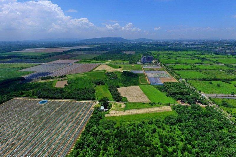 沙崙農場是一個生態豐富、地勢完整的優良農地,如今就要消失?(吳仁邦攝影)