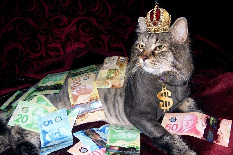 不良的花錢習慣,絕對會讓人掉入貧窮。(圖/Eldwick@pixabay)