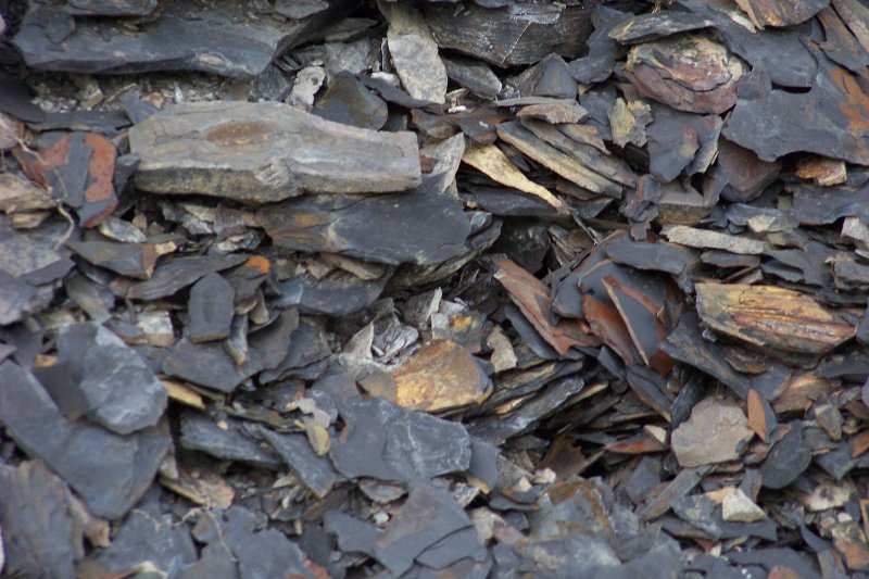 油頁岩。(Lvklock@Wikipedia/By CC 3.0)