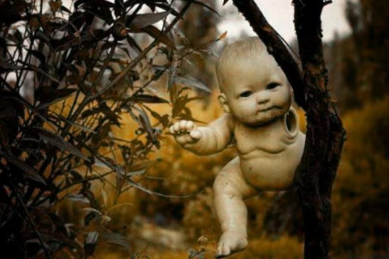 滿佈詭異娃娃的森林,你敢踏進去嗎?(圖/范涴晴@youtube)