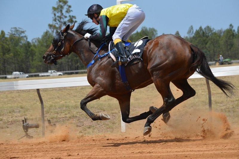 法國賽馬不僅是賭博,更是一種文化。(圖/LindaPom@pixabay)