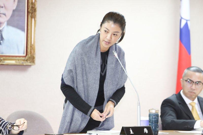 20161124-立法院.同性婚姻修法公聽會.立委許淑華(陳明仁攝)