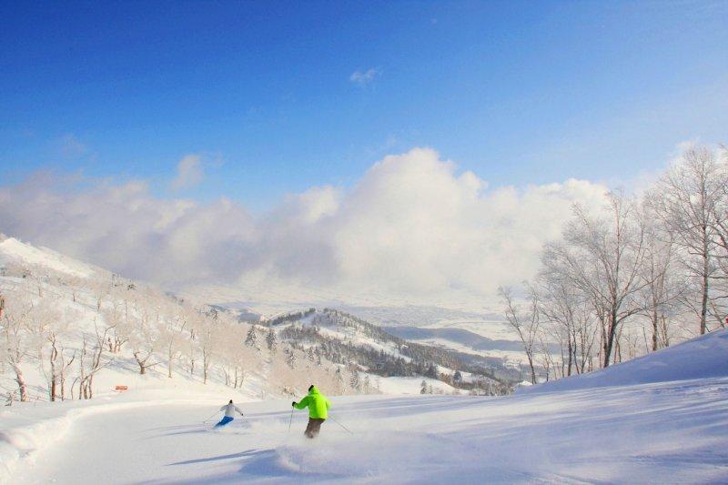北海道五處最美滑雪地,不只風景好,連交通也很方便!(圖/MATCHA提供)