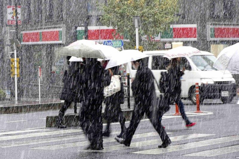 2016年11月24日,日本東京降下半世紀來當地最早的初雪。(美聯社)