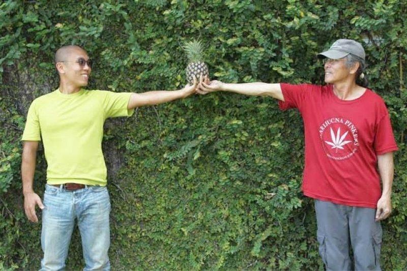 返鄉務農的鳳梨王子楊宇帆推出健康的有機鳳梨,推廣食安和教育的重要性。(圖/楊煥世攝,親子天下提供)