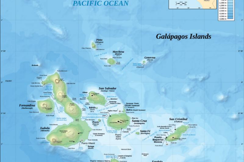 加拉巴哥群島的地形圖和海深圖。加拉巴哥群島坐落在厄瓜多西方,達爾文在這裡找到14 隻鳥喙大小和形狀各不相同的鷽鳥,這樣的觀察成為他後來發展天擇說(1859 年)的重要基石。(時報出版提供)