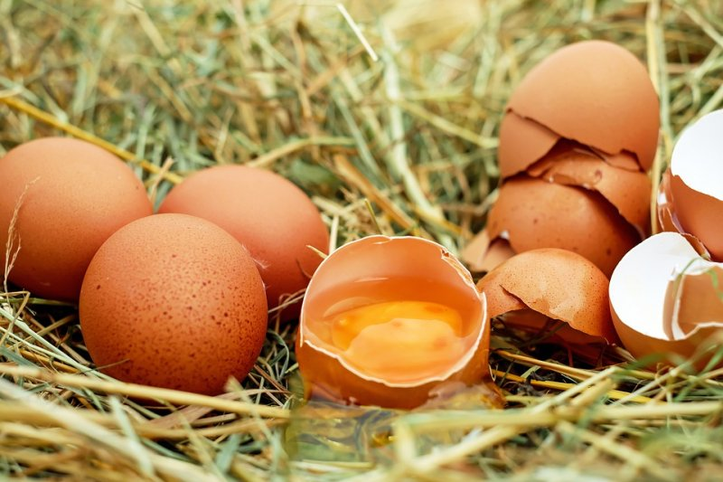 一般認為紅蛋殼的雞蛋代表是土雞產下的蛋,所以比白蛋殼的雞蛋有營養,這是真的嗎?(圖/Couleur@pixabay)