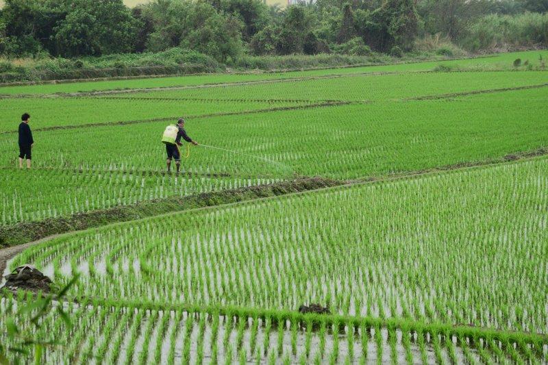 近來儘管政府為選票,陸續推出農保補貼、災害救助、職災保險等惠農措施或可發揮短期效果,但是根本問題在於如何讓農漁民能賺到錢贏得尊嚴。(取自P_H_B@Flickr)