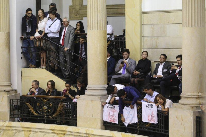 哥倫比亞民眾到國會支持通過與FARC的新和平協議(美聯社)